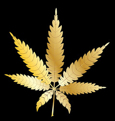 Gold cannabis leaf vector