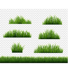 Green grass border big set transparent background vector