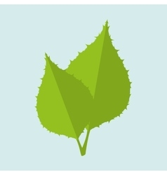 leaf icon design vector image