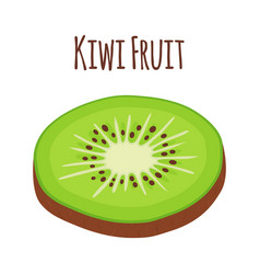 tropical fruit kiwi slice of kiwi flat vector image