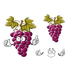Cartoon purple grape fruit character vector image vector image