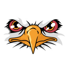 Cartoon animal mascot character for sport logo vector