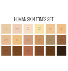 Creative of human skin tone vector