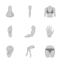 Part of body set icons in monochrome style Big vector