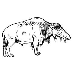 Prehistorical animal vector