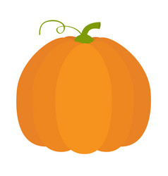 pumpkin icon orange color vegetable collection vector image