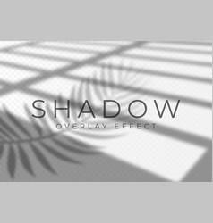 shadow overlay effect shadow and light overlay vector image
