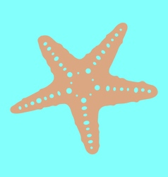 Starfish vector