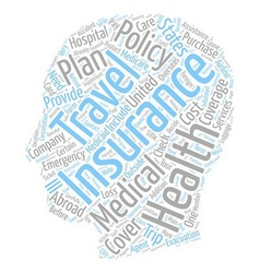 Do You Need Health Or Travel Insurance text vector image