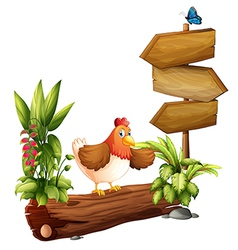 A chicken near the arrow board vector image vector image