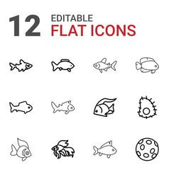 12 aquatic icons vector