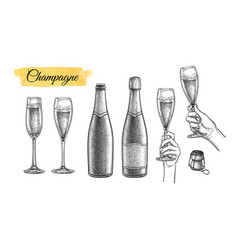 clinking glasses and champagne bottles vector image
