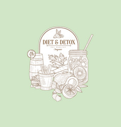 detailed sketch with natural products and vector image vector image