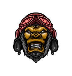 gorilla head design wearing helmet vector image