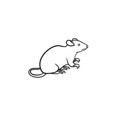 Lab rat hand drawn sketch icon vector