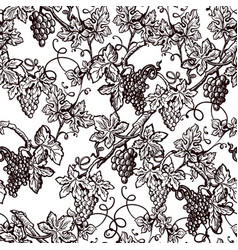 lush grape bushes black and white seamless pattern vector image
