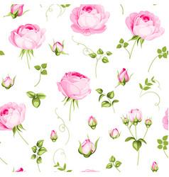 luxurious rose wallpaper vector image