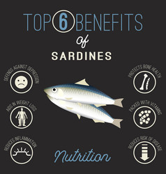 sardines beans benefits vector image