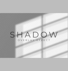 Shadow overlay effect transparent soft light and vector