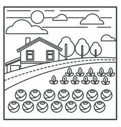 vegetable garden and village house countryside vector image