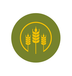 wheat paddy logo vector image