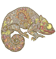 Zentangle stylized multi coloured chameleon vector