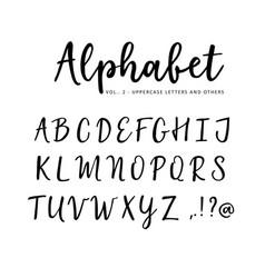 hand drawn alphabet brush script font vector image