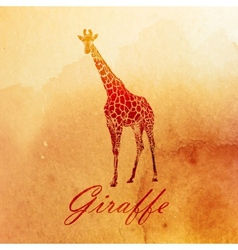 vintage of a watercolor giraffe on the old paper vector image