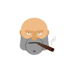 angry man with cigar aggressive male face isolated vector image
