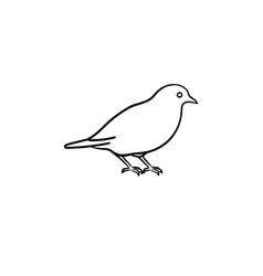 bird hand drawn sketch icon vector image