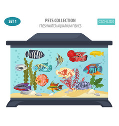 freshwater aquarium fishes breeds icon set flat vector image