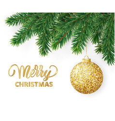 Greeting card with fir tree branches hanging vector