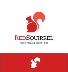 modern red squirrel logo vector image