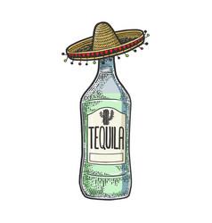Tequila mexican sombrero sketch engraving vector
