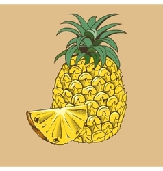 Pineapple in vintage style Colored vector image vector image