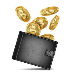Bitcoin wallet black color success vector