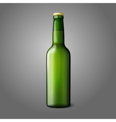 Blank green realistic beer bottle isolated on grey vector image