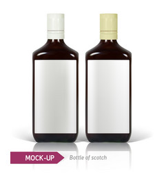 Bottles of scotch vector