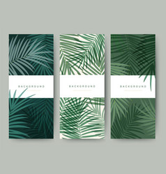 Branding packaging palm coconut bamboo tree leaf vector