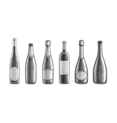 champagne and wine bottles vector image