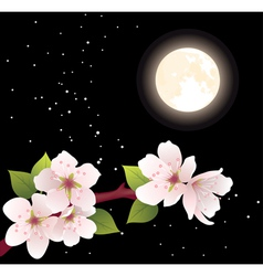 cherry branch and moon vector image