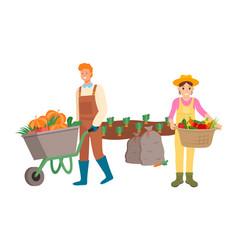 Farming people man and woman harvesting season vector