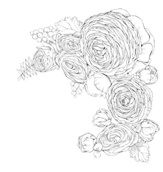 Greeting card with linear Ranunculus flowers vector image