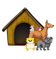 group cute animals with dog house cartoon vector image