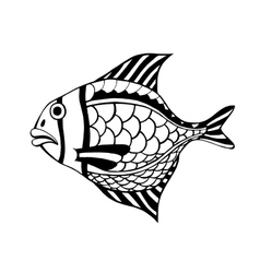 Hand Drawn Fish vector image