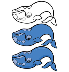 hand drawn whale vector image