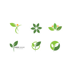 Logos green leaf ecology vector