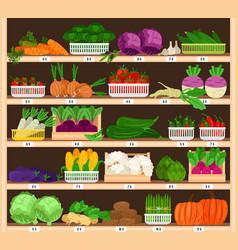 Vegetables on shelves market vegetable stall with vector