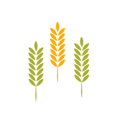 agriculture wheat logo template icon vector image
