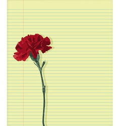 Carnation on paper vector